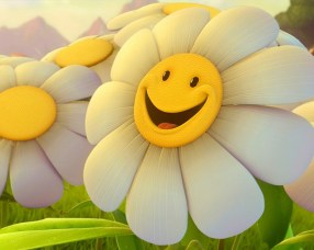 semangat bunga smile senyum matahari